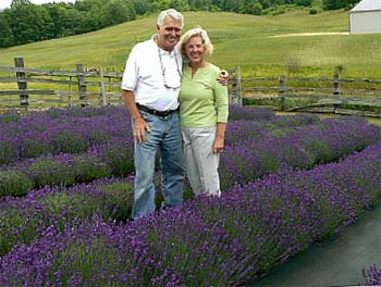 Lavender Hill Farms